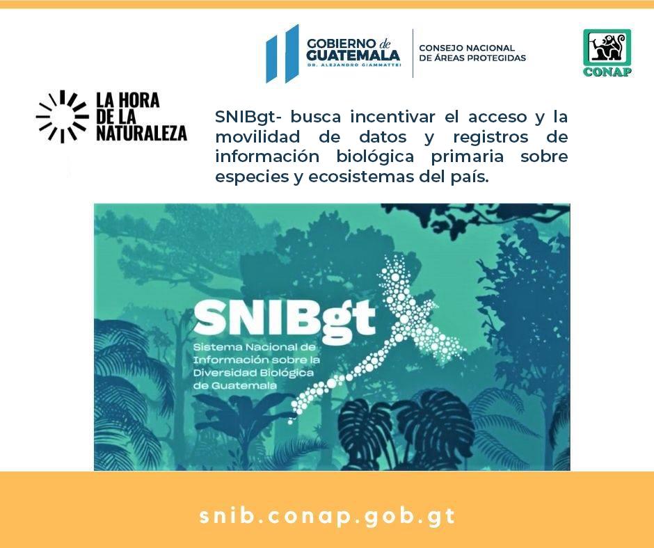 Conoce más sobre el SNIBgt