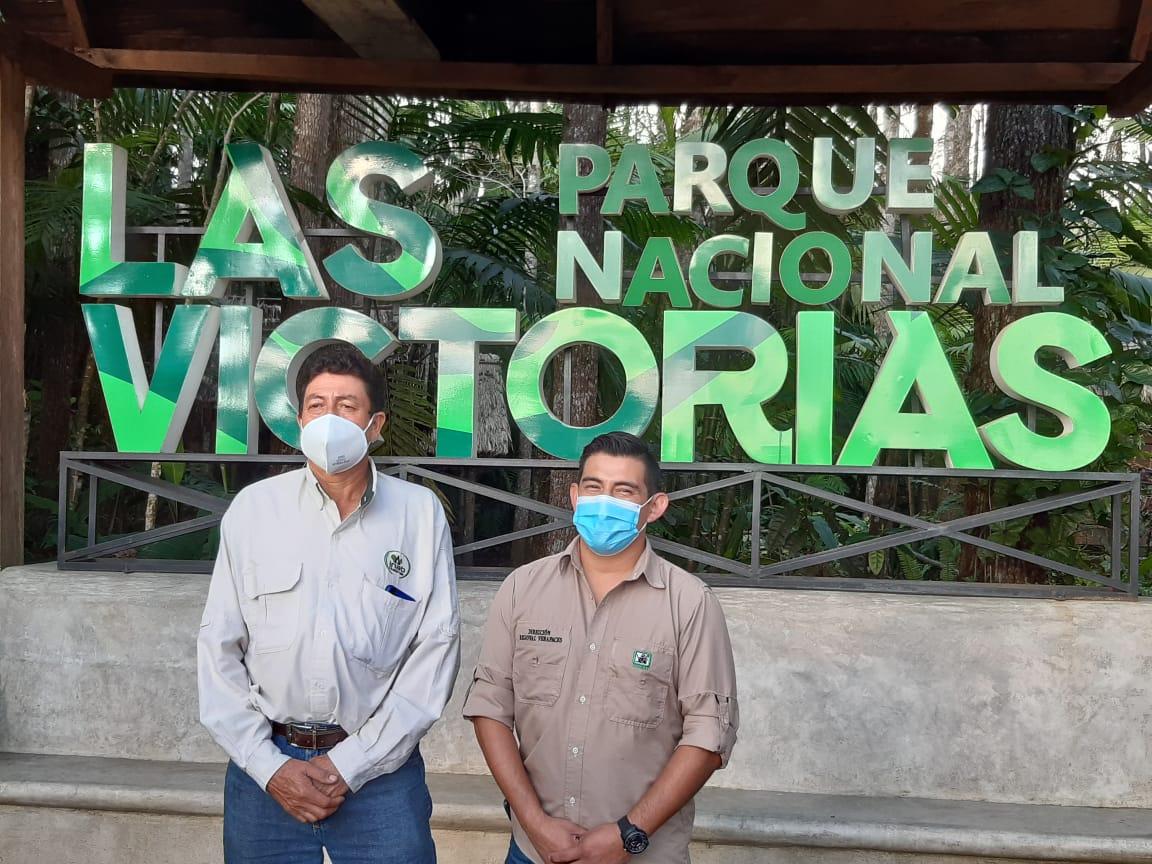 Cocodrilo moreletti del Parque Nacional Las Victorias murió el 27 de diciembre
