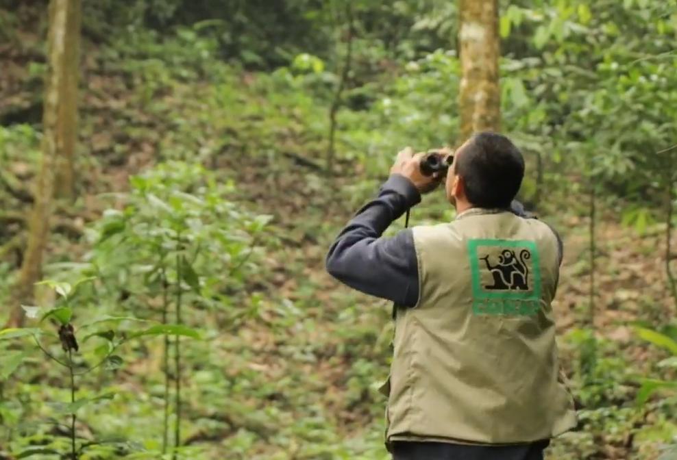 Monitoreos y patrullajes rutinarios en Nororiente