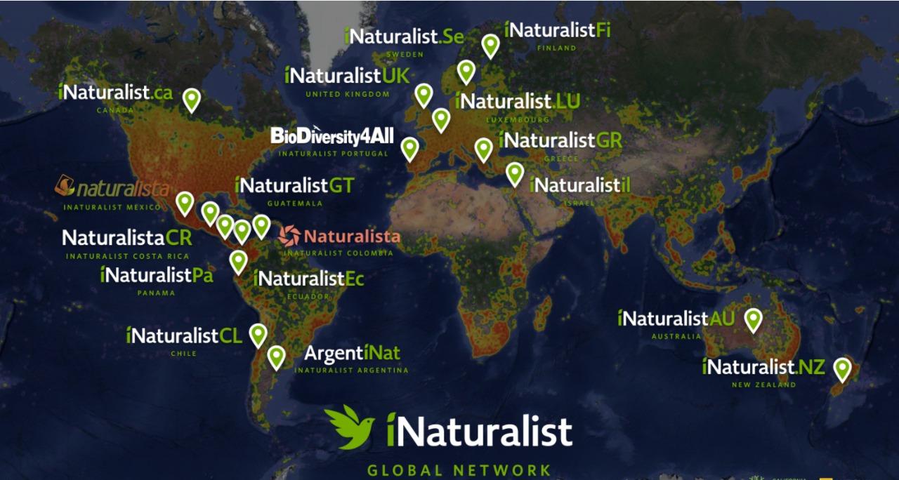 iNaturalistGT
