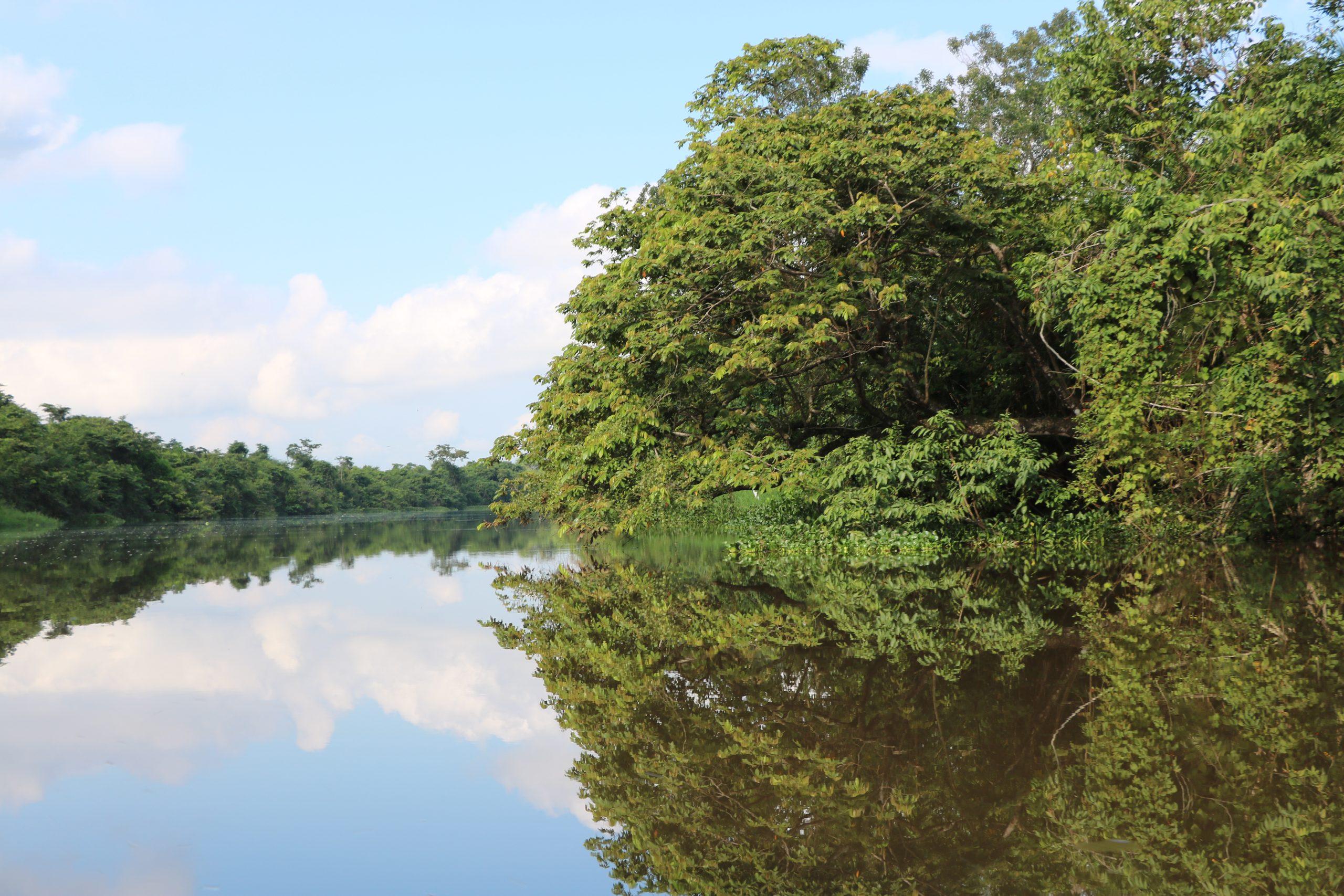 Bienes y servicios ecosistémicos del Refugio de Vida Silvestre Bocas del Polochic