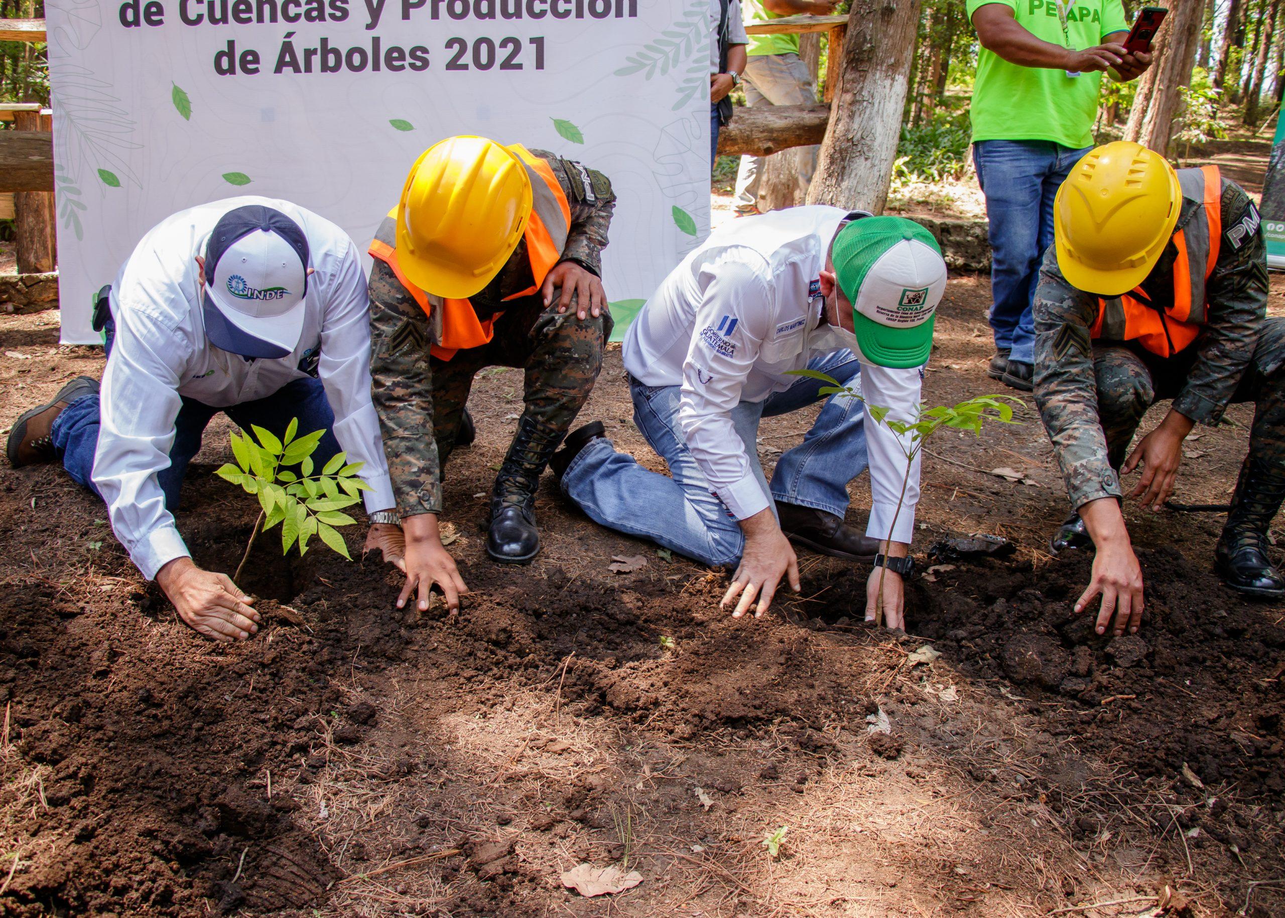 Reforestación en el Parque Regional Municipal La Cerra